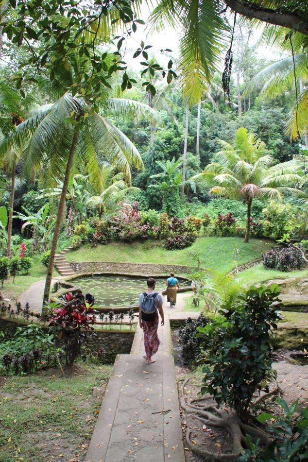 Elephant cave gardens.jpg